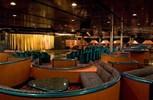Carnival Sensation. Plaza Aft Lounge