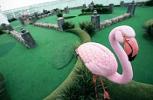 Enchantment Of The Seas. Adventure Dunes Golf Course