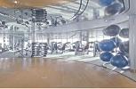 P & O Arcadia. Gymnasium